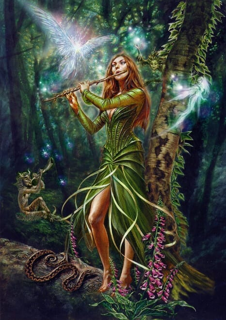 The Faerie Reel Card
