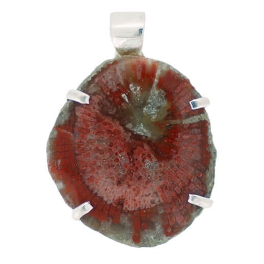 Horn Coral Pendant 12 grams